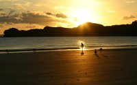 sunset cape hillsborough